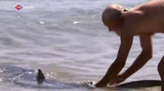 Kahraman dede köpekbalığına karşı