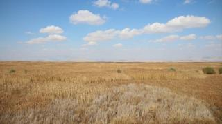Kuruyan Akşehir Gölü'nün tabanında su bulundu
