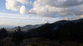 Balıkesir'de orman yangını: Müdahale sürüyor
