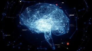 Her hareketi izleyen nöronlar