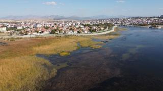 Türkiye'nin en büyük tatlı su gölünde kuraklık tehlikeli boyutta
