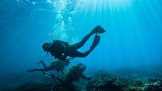 Mersin kıyılarındaki su altı kanyonları dalış tutkunlarını ağırlıyor