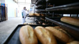Mesleki eğitim alan hükümlüler günde 15 bin ekmek üretiyor