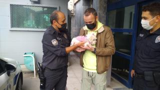 Manisa'da köpek eğitim merkezinden çalınan köpek, pet shopta bulundu