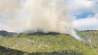 Antalya'daki orman yangını kontrol altına alındı