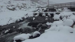 Rize yaylalarında kar kalınlığı 20 santimi aştı
