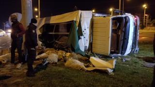 Devrilen kamyonetteki 15 küçükbaş hayvan öldü