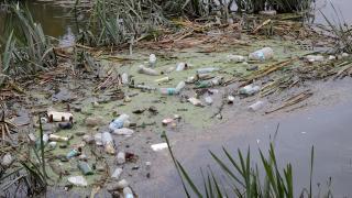 Tunca Nehri çöple doldu