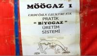 Hayvan gübresinden 'Möögaz' üretti