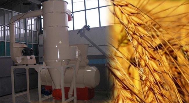 Tam buğday üretimi için pratik yöntem