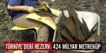 Türkiyedeki rezerv: 424 milyar metreküp