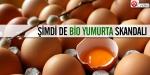 Şimdi de bio yumurta skandalı