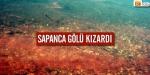 Sapanca Gölü kızıla büründü