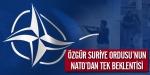 Özgür Suriye Ordusunun NATOdan tek beklentisi