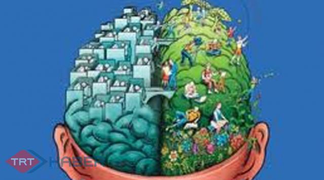 Beyin Kentte Ayrı Kırsalda Ayrı İşliyor