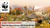 Türkiye'nin Doğal Mirasını Koruyacak 1001 Kişi Aranıyor