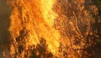 Adana'daki Yangın 3 Evi Küle Çevirdi