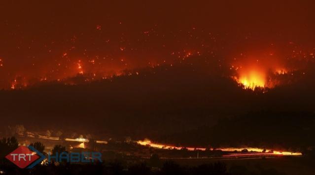 İsrailde Orman Yangını...
