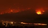 İsrail'de Orman Yangını...
