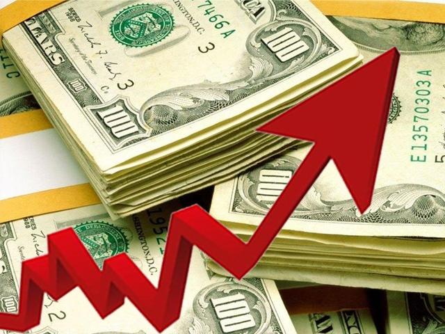 Dolar Son İki Yılın Zirvesinde