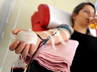 Hayat Kurtaran Kanın Yolculuğu