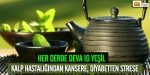 10 süper yeşil gıda