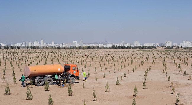 Türkmenistanda çöle karşı savaş