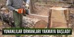 Yunanlılar ormanları yakmaya başladı!