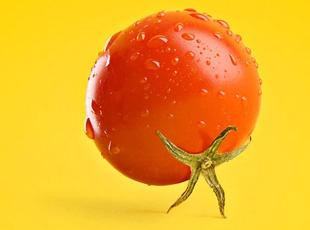 Yiyeceklerden sanat eserleri