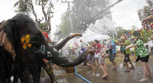 Su festivalinde ölümler korkutuyor