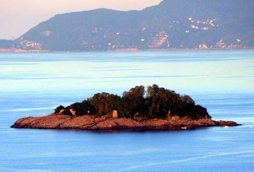 Giresun Adası iki aylığına kuşlara bırakılacak
