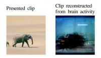 Bilim Adamları Düşünceyi Görüntüledi