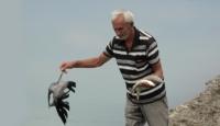 Melet Irmağındaki Balık Ölümleri Korkutuyor