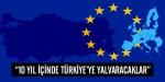 10 yıl sonra Türkiyeye yalvaracaklar