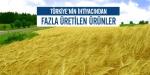 Türkiyenin ihtiyacından fazla üretilen ürünler