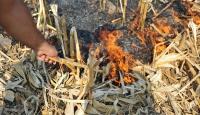 Anız yakmak çiftçinin kazancını yüzde 80 azaltıyor