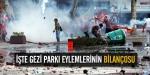 İşte Gezi Parkı eylemlerinin bilançosu