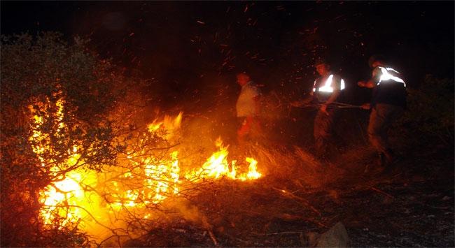 Aydında makilik alandaki yangınlar