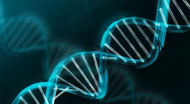 Tecavüzcülerin DNAsını yüz yıl saklayacaklar