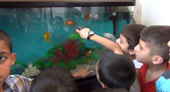 Camide her çocuğun bir balığı var