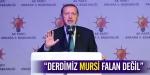 """""""Derdimiz Mursi falan değil"""""""