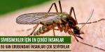 Sivrisinekler için en çekici insanlar