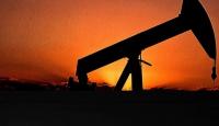Ham petrol ithalatı 2 milyon 89 bin 647 ton oldu