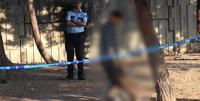 Şişlide ağaca asılı erkek cesedi bulundu