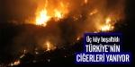 Türkiyenin ciğerleri yanıyor