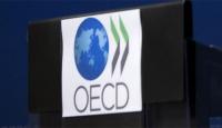 OECD Ne Anlama Geliyor?