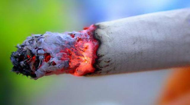 Parklarda Sigara İçmek Yasaklandı