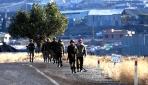 Sınır Bölgelerinde Askeri Hareketlilik