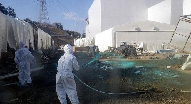 Japonya, nükleere ara veriyor