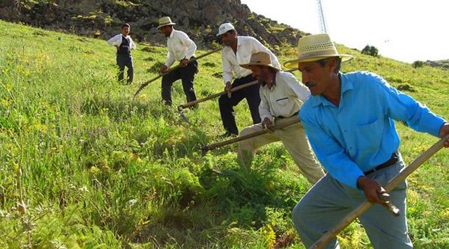 Çiftçilere yılın ilk 5 ayında 6 milyar liralık destek